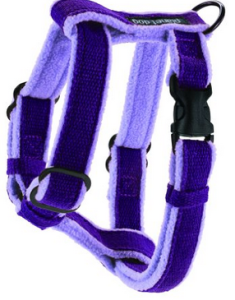 planet dog harness