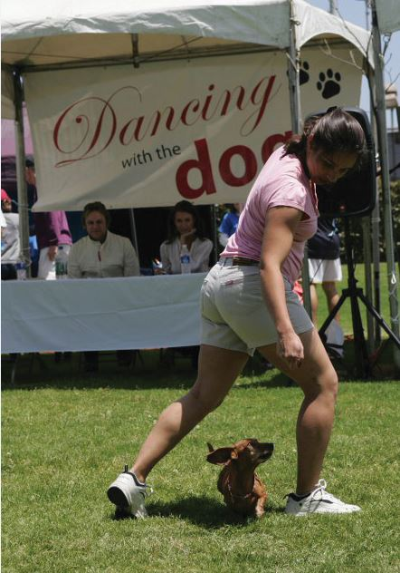 Dancing with a Daschund